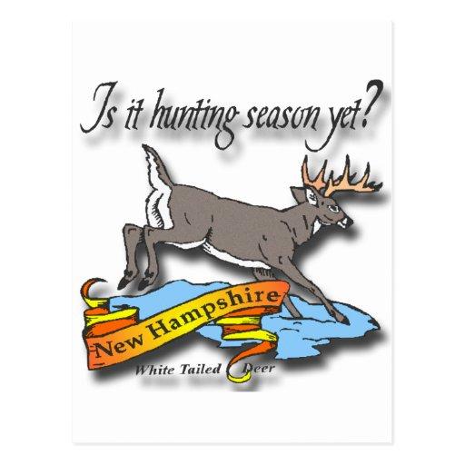 ¿El ciervo de New Hampshire es él temporada de Postales