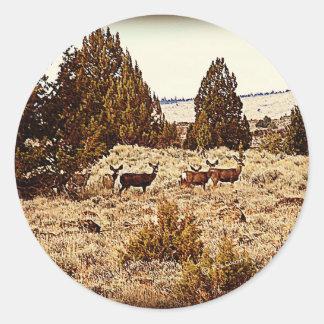 El ciervo mula hace etiqueta redonda