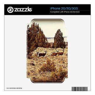 El ciervo mula hace skins para eliPhone 3