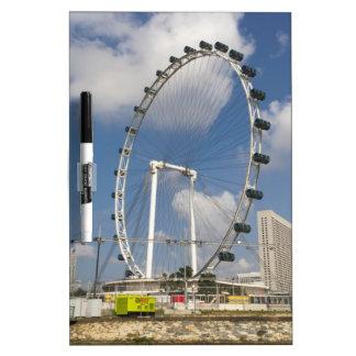 El círculo completo del aviador de Singapur en Pizarra Blanca