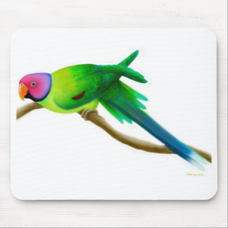 El ciruelo dirigió el Parakeet Mousepad Alfombrilla De Ratones