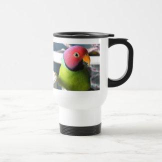 El ciruelo dirigió el Parakeet Tazas De Café