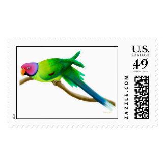 El ciruelo dirigió franqueo del Parakeet Timbre Postal