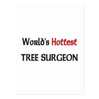 El cirujano del árbol más caliente del mundo postal