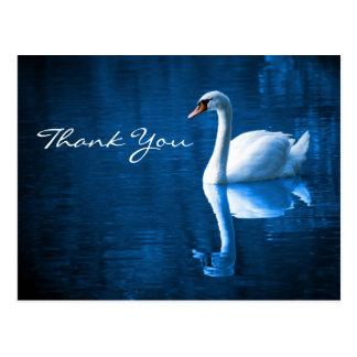 El cisne blanco en las aguas azules le agradece po tarjeta postal