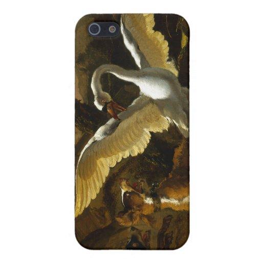 El cisne enfureció por los perros que pintaban por iPhone 5 cárcasa