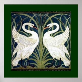 El cisne y la precipitación y el iris wallpaper co póster