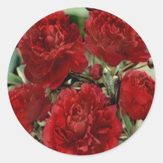 El clavel rojo florece a los pegatinas pegatina redonda