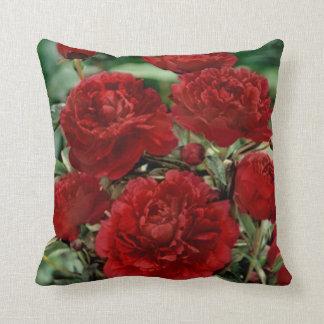 El clavel rojo florece la almohada de tiro