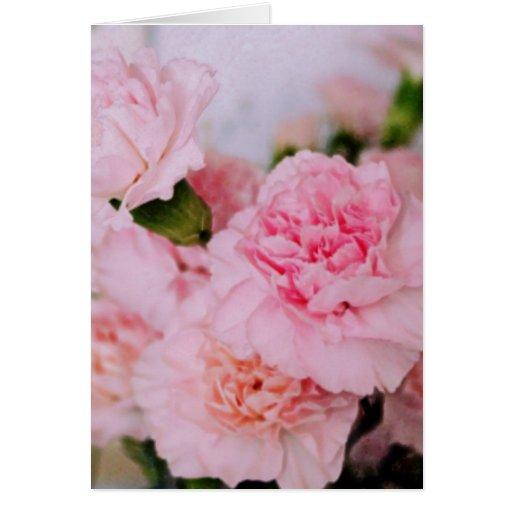 el clavel rosado florece fotografía del estilo del tarjeta de felicitación