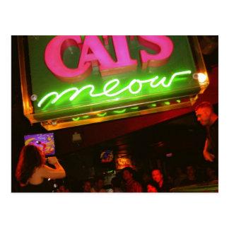El club nocturno del maullido del gato en New Tarjetas Postales