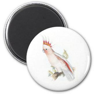 El Cockatoo de Leadbeater de Edward Lear Imán Redondo 5 Cm