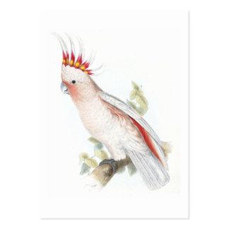 El Cockatoo de Leadbeater de Edward Lear Tarjetas De Visita Grandes