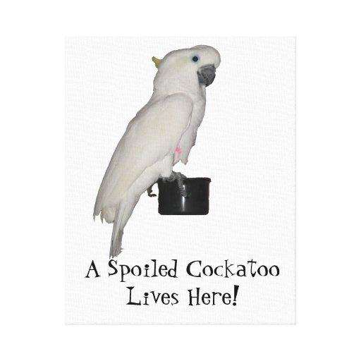 El Cockatoo estiró la impresión de la lona Lona Envuelta Para Galerías