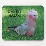 El Cockatoo rosado no es un Galah Mousepad Tapete De Raton