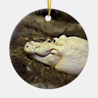 el cocodrilo blanco trippy enfocó reptil adornos