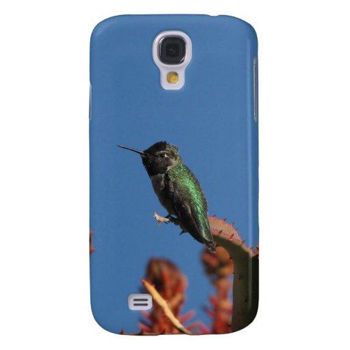 El colibrí 3 de Helaine
