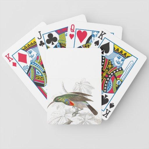 El colibrí baraja de cartas