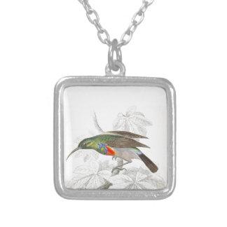 El colibrí collar personalizado