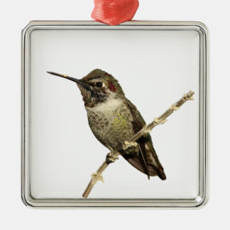 El colibrí de Ana Adorno Navideño Cuadrado De Metal