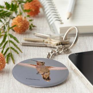 El colibrí de Ana asoma en el lugar Llavero Redondo Tipo Pin