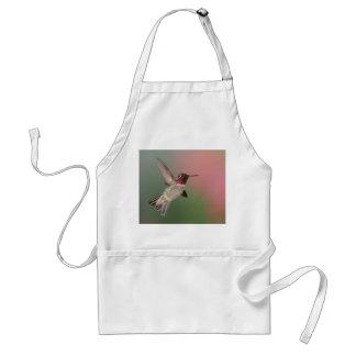 El colibrí de Ana Delantal
