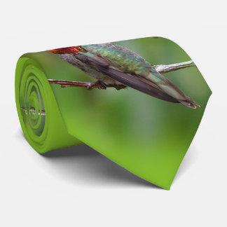 El colibrí de Ana: Este rey Wears una corona Corbatas Personalizadas