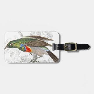 El colibrí etiquetas de maletas
