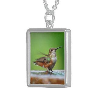 El colibrí femenino de Allen que disfruta de un ba Colgante Personalizado