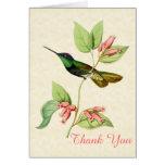 El colibrí magnífico le agradece tarjeta de nota