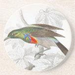 El colibrí posavasos cerveza