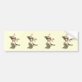 El colibrí Rojo-throated (colubris de Trochilus) Pegatina Para Auto