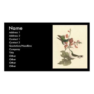 El colibrí Rojo-throated (colubris de Trochilus) Plantilla De Tarjeta Personal