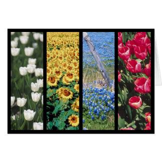 El collage colorido de la flor de la primavera le  felicitaciones