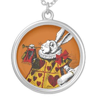 El collar blanco del conejo