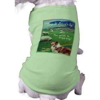 El collie y las ovejas impresionantes de la costa  camisa de mascota