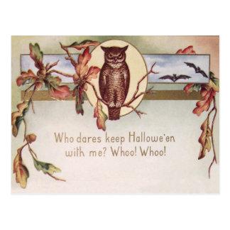 El color de la caída del otoño del palo del búho postal