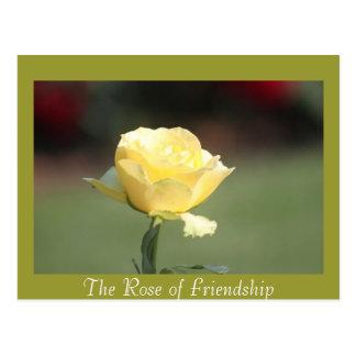 El color de rosa de la amistad postales
