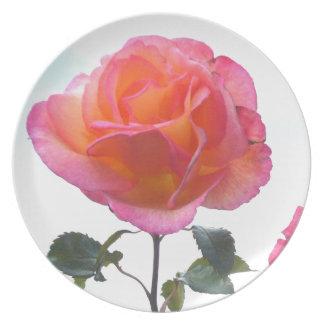 El color de rosa perfecto platos para fiestas