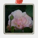 El color de rosa tímido ornamento de reyes magos
