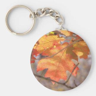 El color del llavero del otoño