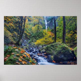 El color del otoño a lo largo de la cala del póster