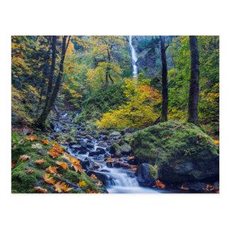 El color del otoño a lo largo de la cala del tarjeta postal