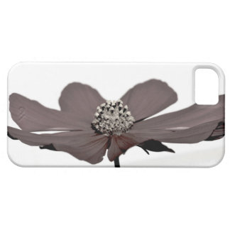 El color vertió de la flor iPhone 5 carcasa