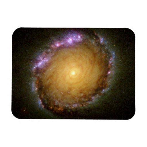 El color vivo de la galaxia espiral imanes de vinilo