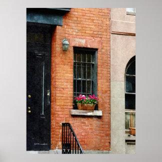El COMENZAR DEBAJO de $20 - Chelsea Windowbox Posters