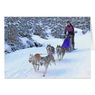 El competir con de perro de trineo tarjeta de felicitación
