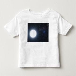 El concepto del artista que muestra el sistema de camisas