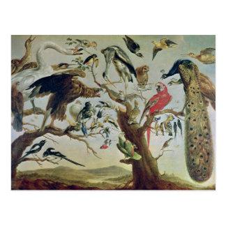 El concierto del pájaro postal