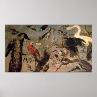 El concierto del pájaro póster